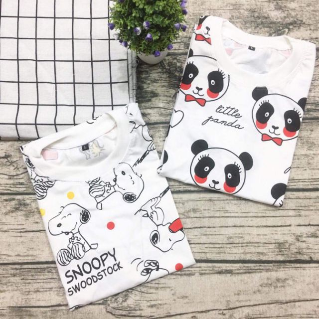 Áo thu giá rẻ - Chó Snoopy, Gấu Little Panda