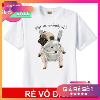 [SALE] Áo thun Teen Nam Nữ in hình Chó Pug Cute Dog - Mẫu áo thun siêu HOT