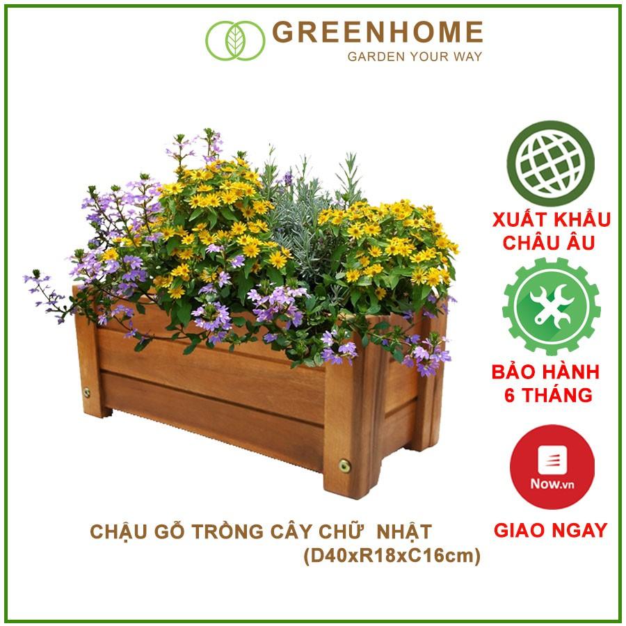 (SALE OFF) Chậu gỗ trồng cây Chữ nhật chịu nước tốt D40xR18xC16cm - Chậu trồng cây - chậu gỗ trồng sen đá