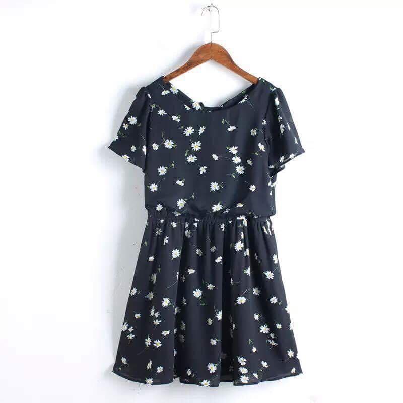 Váy cúc hoạ mi