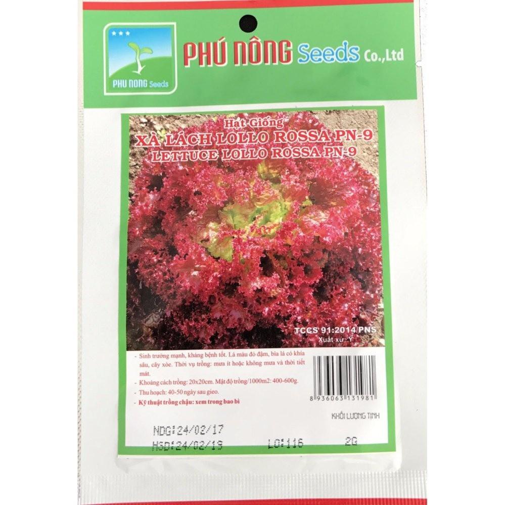 Hạt giống Xà lách tím Lollo Rossa - Gói 2g PN131981