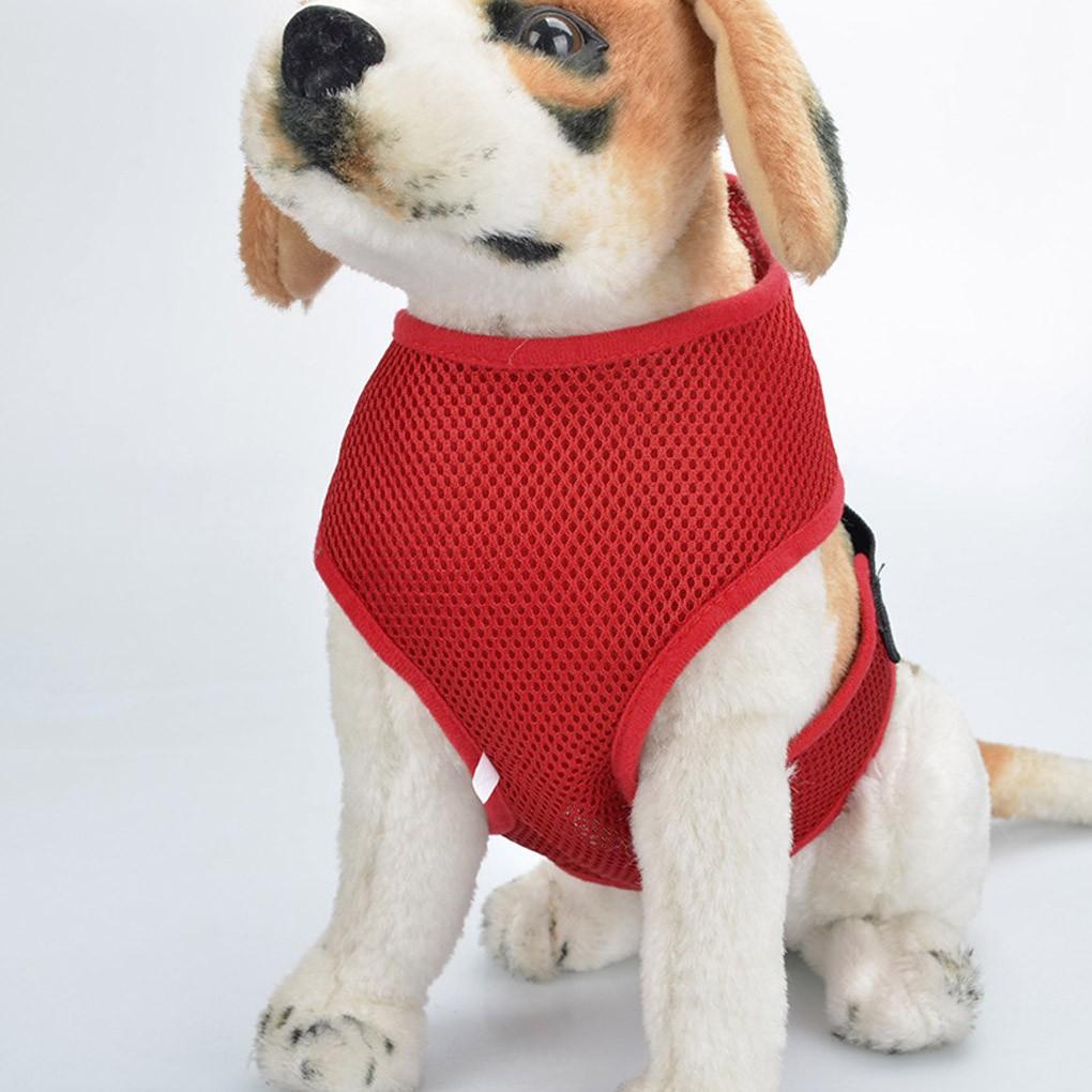 Vest thắt lưng an toàn cho thú cưng