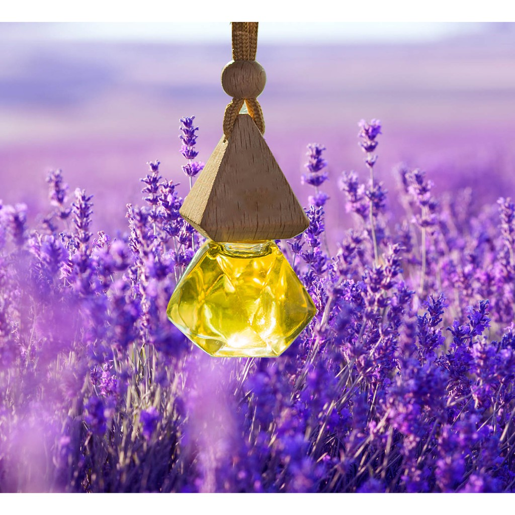 Tinh dầu hoa oải hương ( lavender )