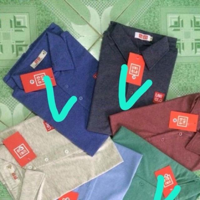 Compo 4 áo thun nam