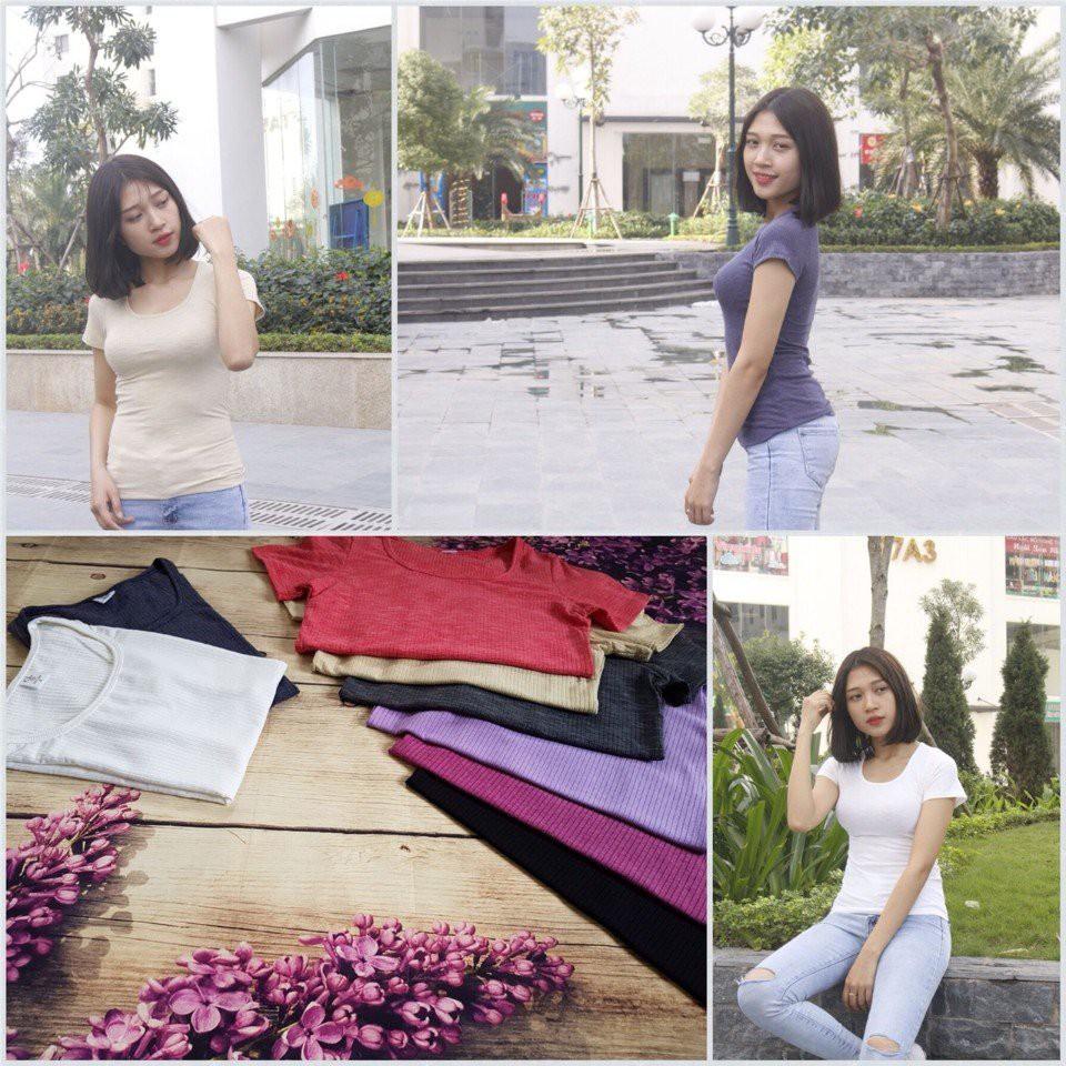 Áo phông nữ cotton gân Lend sead xuất Hàn