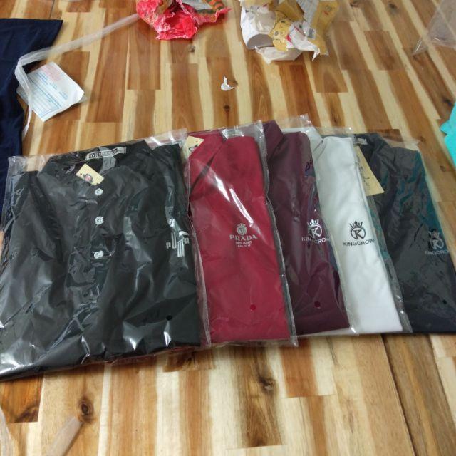 Combo 5 áo thun nam