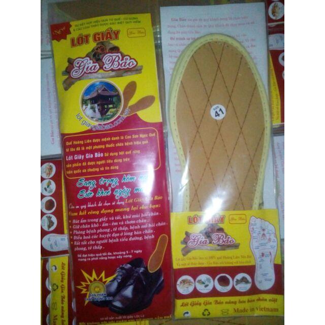 Lót giầy hương quế size 36->42