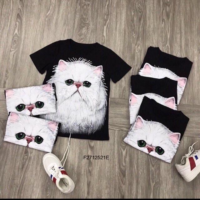 Áo thun mèo