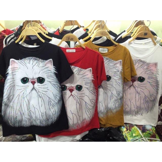 Áo mèo kim sa