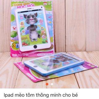 (Video) Đồ chơi ipad mèo tôm thông minh