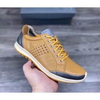 [ GIÁ SỐC ] giày golf nam – giầy golf ecco nhập khẩu [ DỤNG CỤ GOLF ]