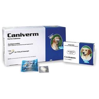 Thuốc sổ giun chó mèo Caniverm 10k 1kg trọng lượng cơ t thumbnail