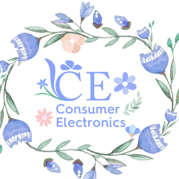 ConsumerElectronics.vn