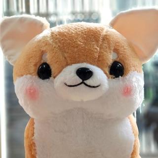 Chó Muchi Muchi Uawa Amuse