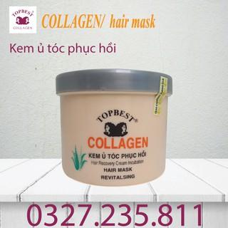 Kem ủ - hấp tóc phục hồi TopBest Collagen 500ml