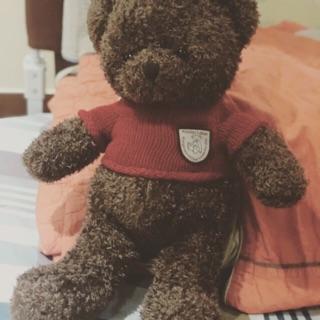 Gấu Teddy lông mịn mượt hàng hịn new
