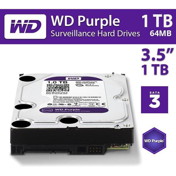 Ổ cứng 1TB HDD Western Purple (Tím) - BH 12 tháng