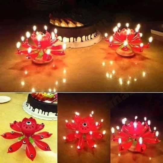 Hộp Nến Sinh Nhật Xoay Nở Hoa Phát Nhạc, Nến Xoay, Nến 3D