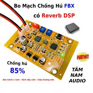 Bo Mạch Chống Hú FBX Cho Loa Kéo Có Reverb DSP Tâm Nam