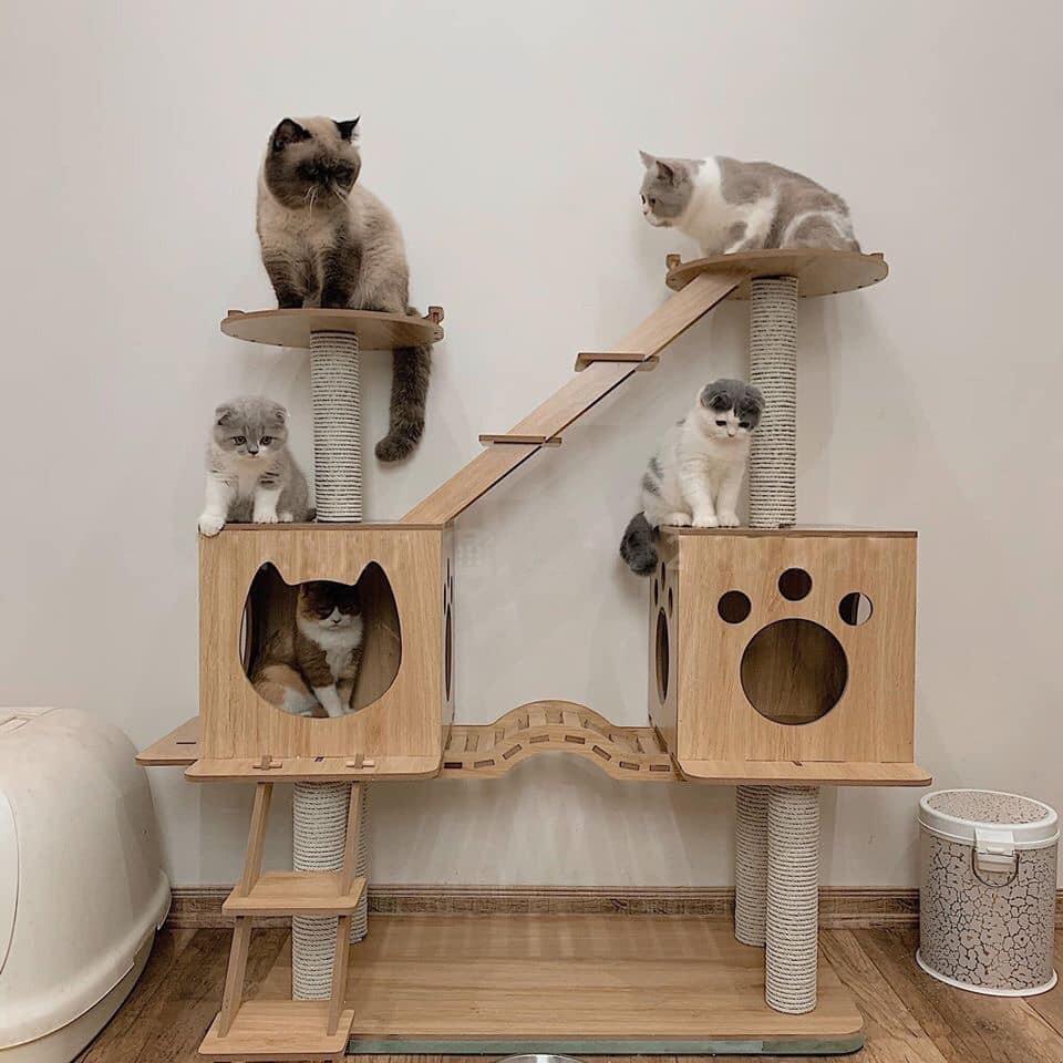 Nhà cây siêu to cho mèo -Cat tree (Có sẵn)