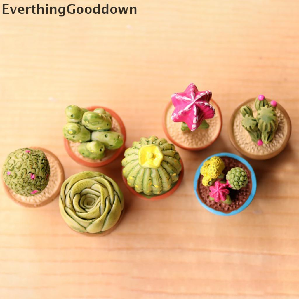 Everthing 5Pcs Miniature Succulent Plant In Pot For Dollhouse Furniture Decoration Home .