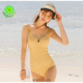 Korean style checkered plaid one-piece swimsuit