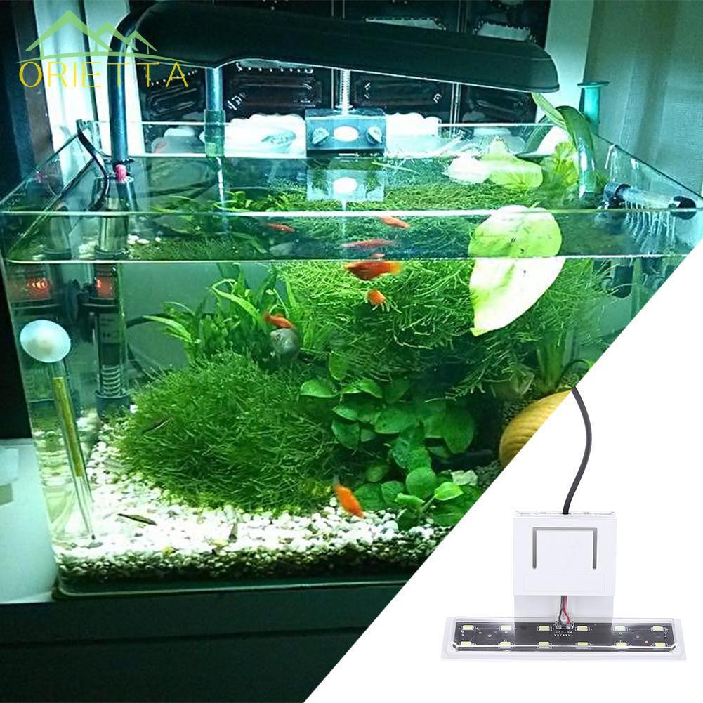 Đèn LED có kẹp dùng để trồng cây thủy sinh trang trí hồ cá | Nông Trại Vui  Vẻ - Shop