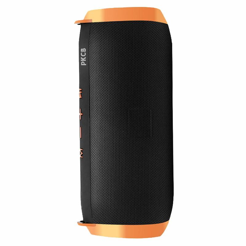 Loa Bluetooth PKCB310 Bản Mở Rộng, chống nước IPX5 Hỗ Trợ Kết Nối Bluetooth ,Thẻ Nhớ, USB - Hàng chính hãng