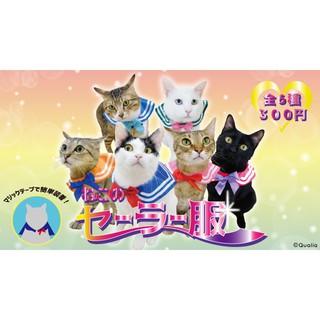 Áo Choàng Thủy Thủ Hình Mèo Con Đáng Yêu Phong Cách Nhật Bản