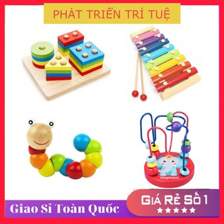 COMBO 4 món đồ chơi gỗ phát triển kỹ năng thông minh cho Bé (Đồ Chơi Trẻ Em)
