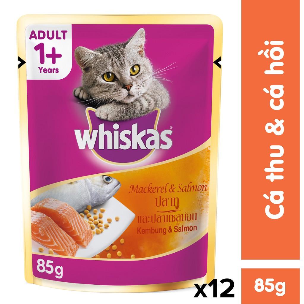 Bộ 12 túi thức ăn cho mèo vị cá thu & cá hồi 85g