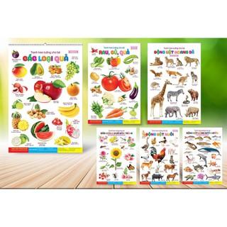 lịch treo tường 14 chủ đề cho bé học – Tranh treo tường con vật, hoa quả, xe cộ