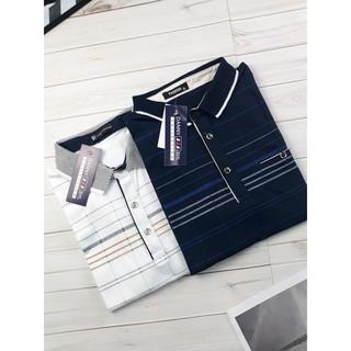 [Mặc Là SANG] Áo Phông Trung Niên Cho Cha Cao Cấp Form Classic Đủ Sizze Đủ màu