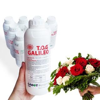 Bảo Quản Hoa Hồng lâu tàn tại vườn trồng hoa và vựa sỉ hoa bằng TOG Galileo (Chai 1 lít) công nghệ Israel