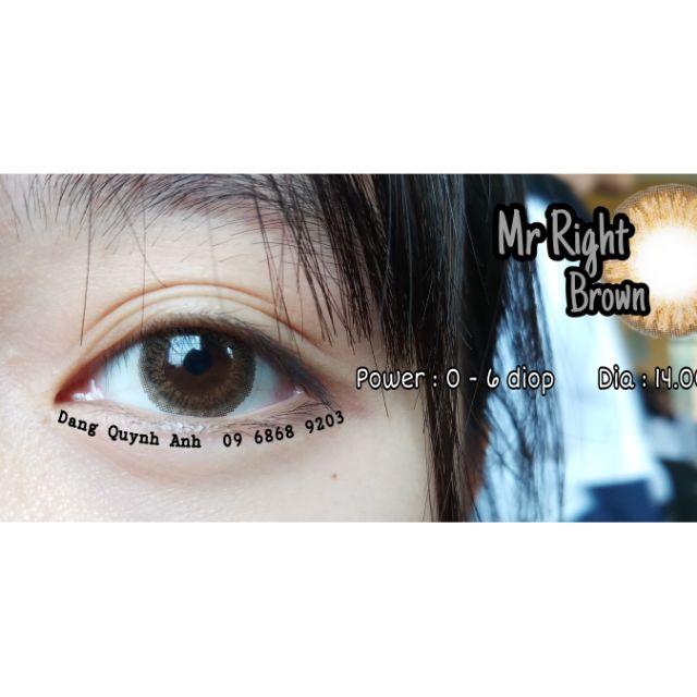 Mr Right Brown _ Lens Vassen _ Kính áp tròng Hàn Quốc