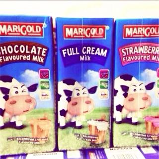 Mix 3 vị sữa tươi Marigold nguyên kem, dâu, socola