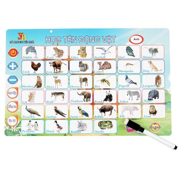 Bảng chữ cái 7 bẳng trong 1 sản phẩm học tiếng anh và tiếng việt Việt