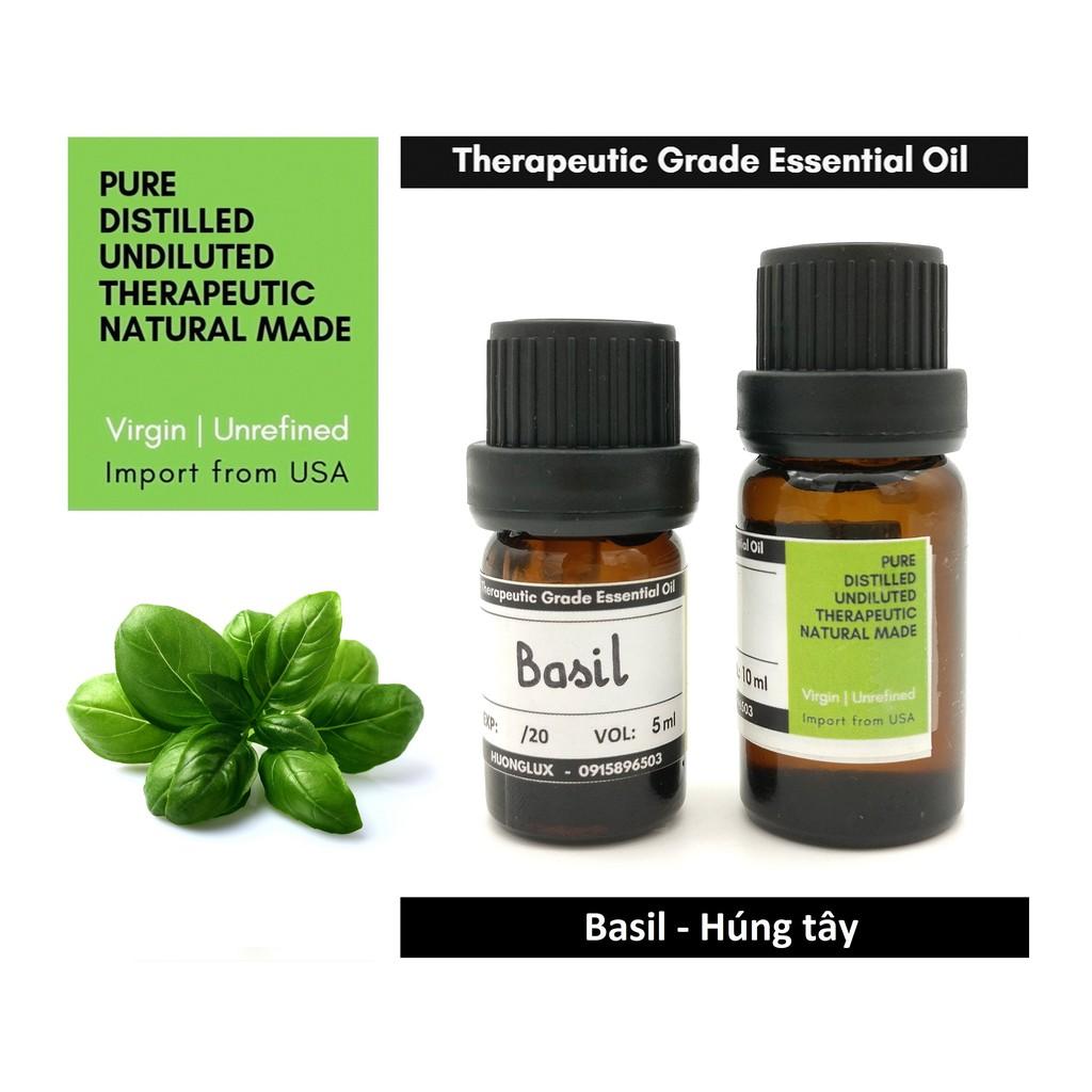 Tinh dầu Húng quế Basil Essential Oil - 10ml (Húng tây)