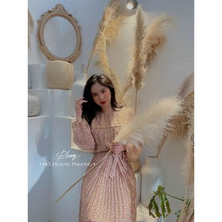 Đầm Hoa Hồng Dập Li Ullzang