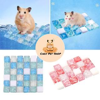 Thảm đá tản nhiệt mát mẻ cho Hamster, Bọ, Gerbil, Nhím, Dumbo Rat, Sóc Bắc Mỹ... thumbnail