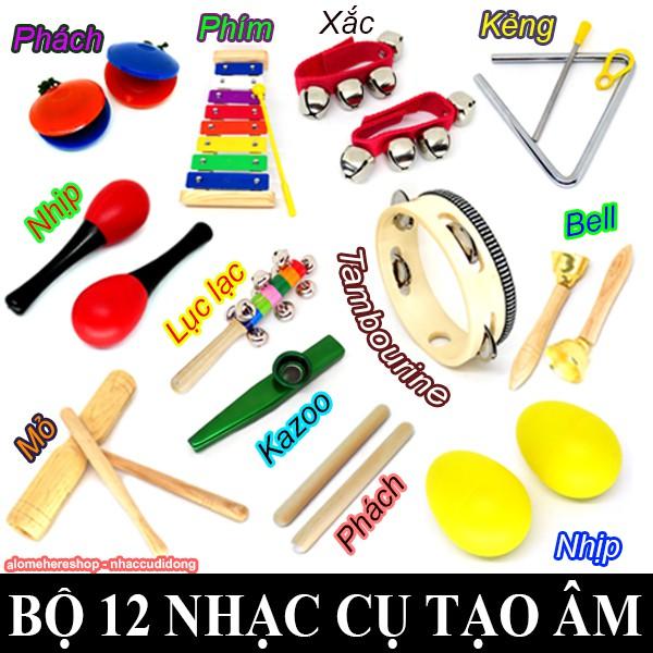 Bộ 12 loại nhạc cụ tạo âm mini nhỏ gọn nhiều màu cho trẻ phát triển tư duy âm nhạc