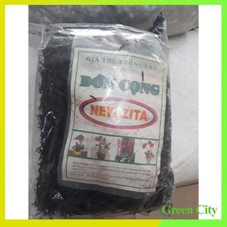 (combo 2 gói) Dớn cọng trồng lan – Green City