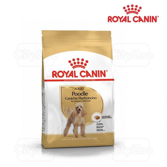 Thức ăn cho chó Poodle trên 10 tháng Royal Canin Poodle Adult 1,5kg