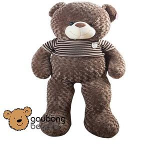 Gấu teddy áo len khổ vải 1m4 shop gấu bông béo phì