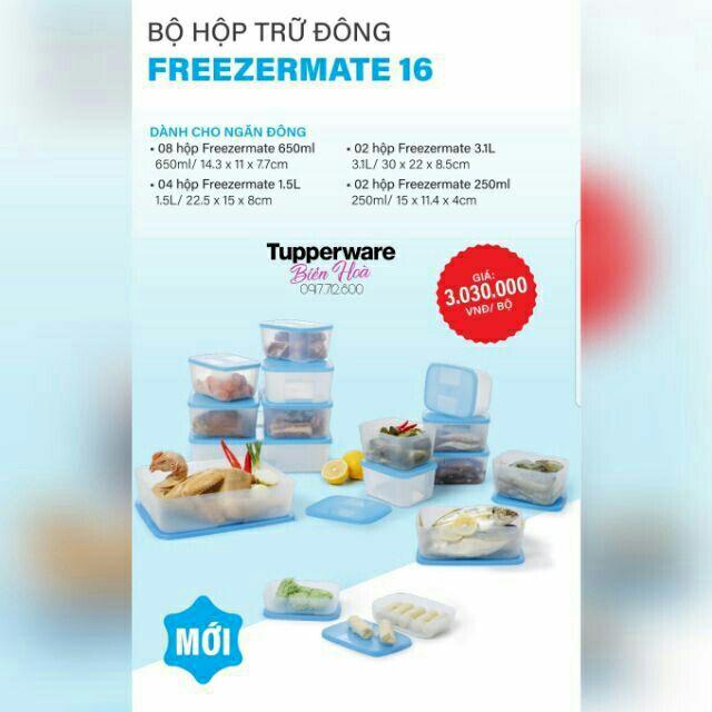 [Tupperware] Bộ hộp trữ đông Freezermate không có đồng hồ 8 hộp & 16 hộp - 2993555 , 1058378763 , 322_1058378763 , 460000 , Tupperware-Bo-hop-tru-dong-Freezermate-khong-co-dong-ho-8-hop-16-hop-322_1058378763 , shopee.vn , [Tupperware] Bộ hộp trữ đông Freezermate không có đồng hồ 8 hộp & 16 hộp