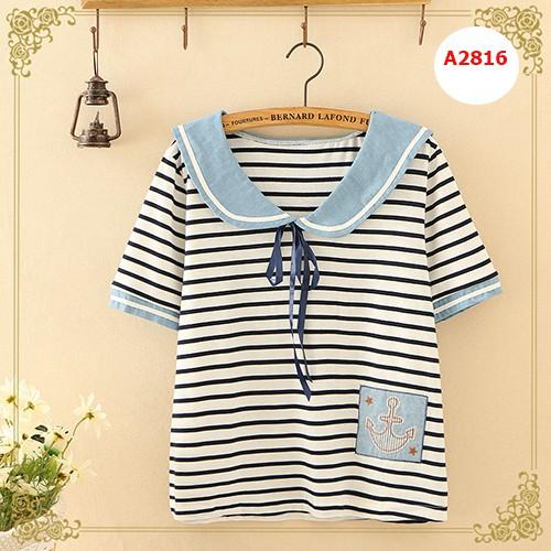 Áo phông A2816