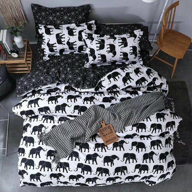poly voi đen