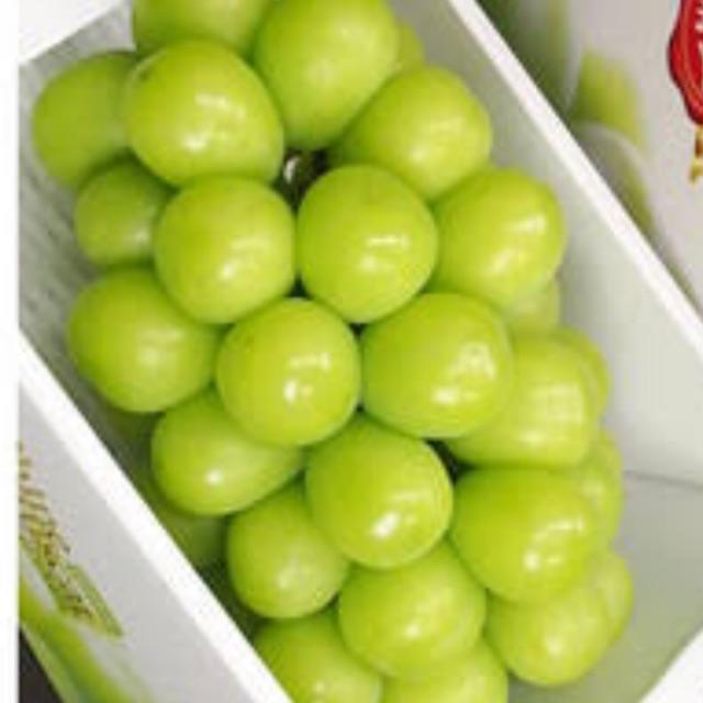 🍇🍇 องุ่น สายพันธุ์ญี่ปุ่น พันธุ์ไชน์ มัสคัส ( Shine Muscat , シャインムスカット) 🍇🍇 พวงใหญ่ สดใหม่ แสนหวานอร่อย สีสวยใส