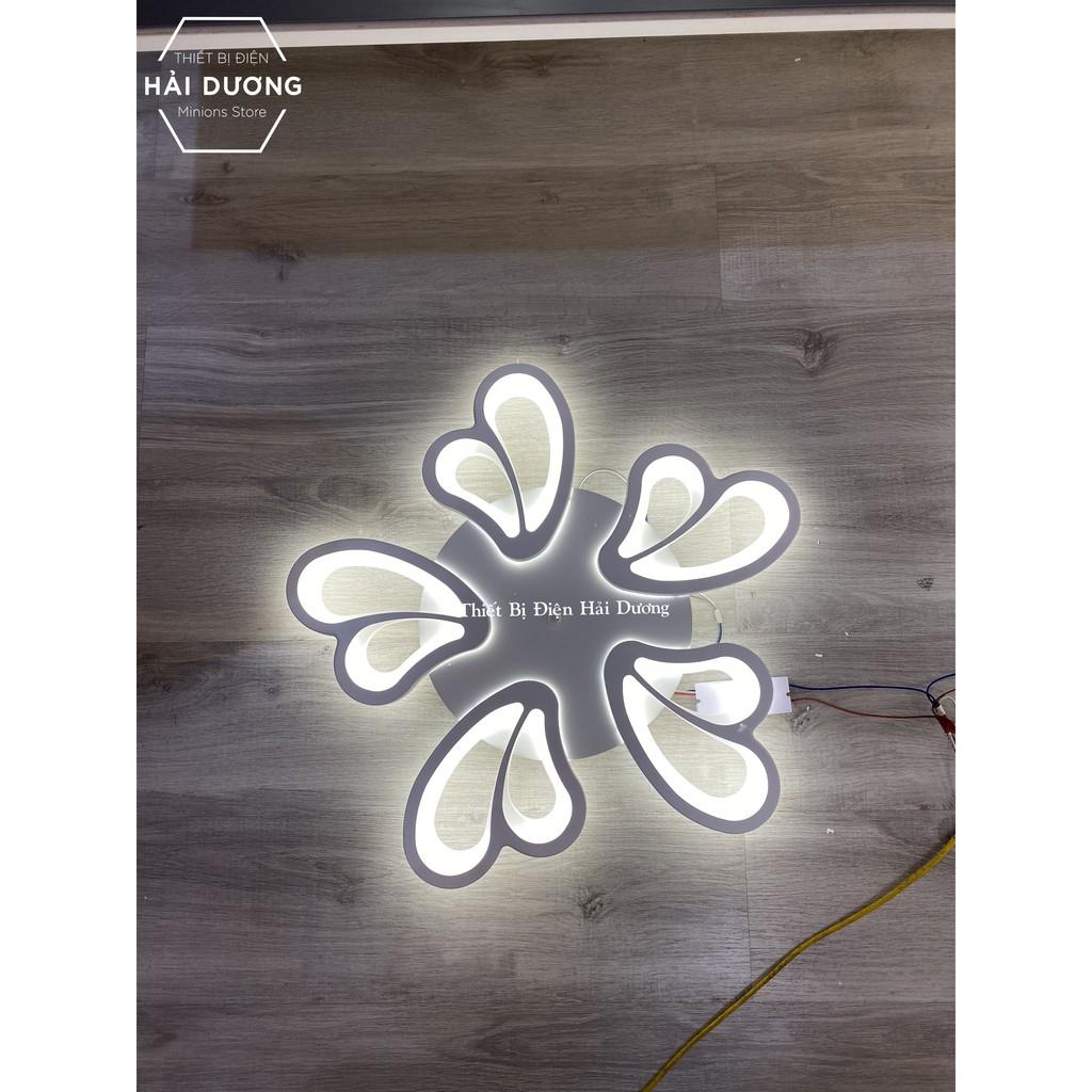 Đèn Ốp Trần Decor 5 Cánh Bướm NT021 - 3 Chế Độ Ánh Sáng - Tăng Giảm Ánh Sáng - Điều Khiển Từ Xa - Kết Nối Điện Thoại