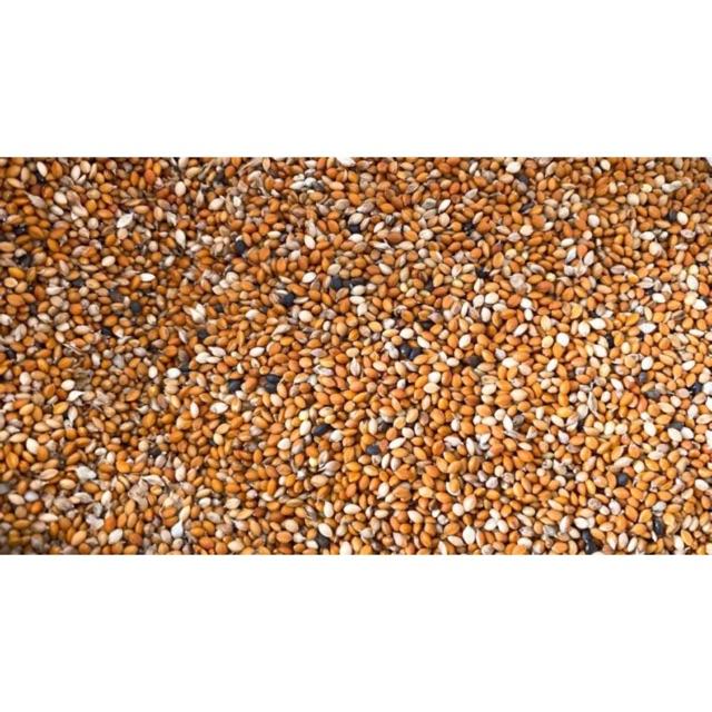 [Mã 267FMCGSALE giảm 8% đơn 500K] Kê nhỏ 3 màu gói 500g và 1kg